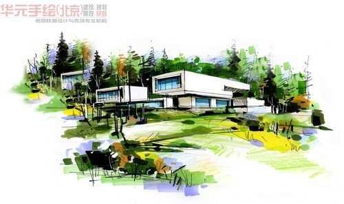 南京林业大学08级园林-作品展示-手绘作品-华元